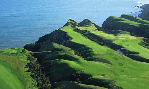 Capekidnappers 524